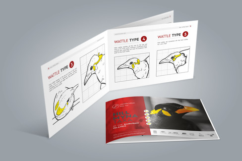 Informační brožura Hill Myna Taxa