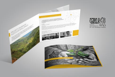 Katalog mezinárodních projektů