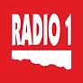 R1_logo_barevne.png