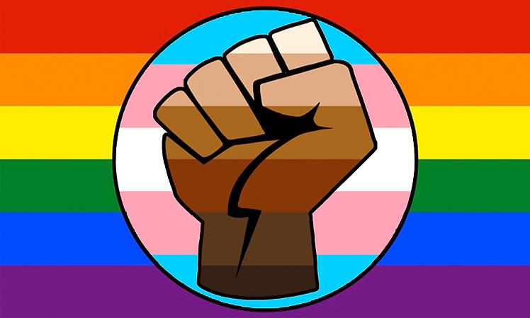 lgbt_gay_trans_pride_blm_fist_flag.png