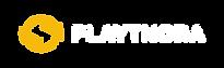 Playthora Logo