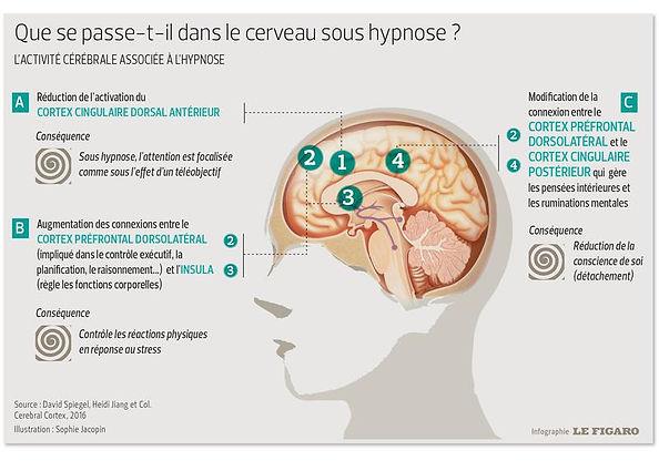 Infographie-Le-Figaro.jpg