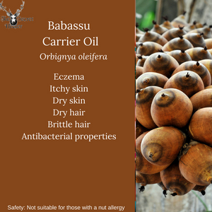 Properties and uses of Babassu oil