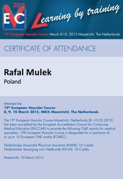 Europejski Kongres Naczyniowy, Maastrich