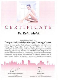 Kurs Mikroskleroterapia Monachium Niemcy