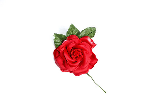 Flor pequeña