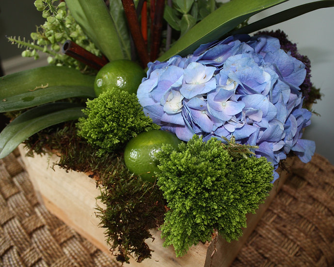 Orchid, Hydrangea and Limes
