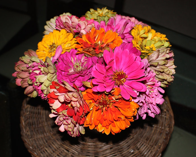 Zinnia Arrangement