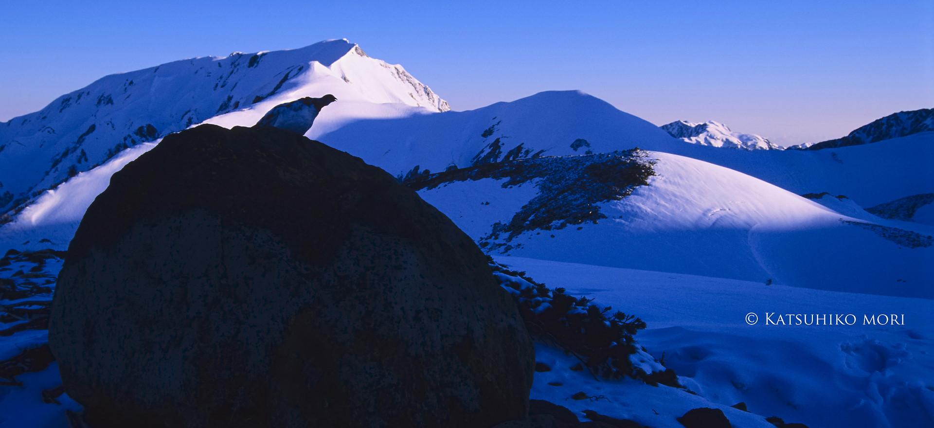 彼の野生の叫びは静寂の中で響き渡り、白き峰々も沈黙から覚醒する