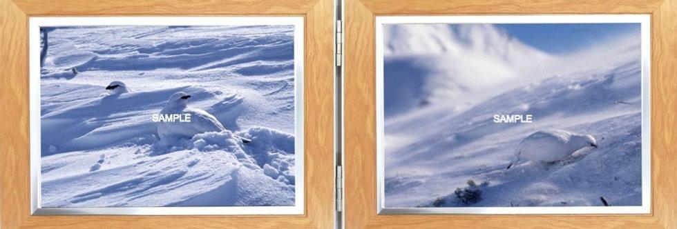 卓上写真(大)2L横x2L横 ブリザードVer.2