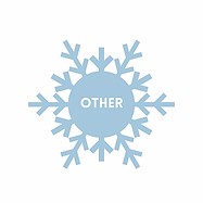 snowflake-other.webp