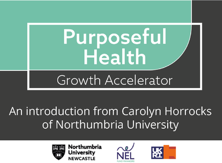 An introduction to the Purposeful Health Growth Accelerator
