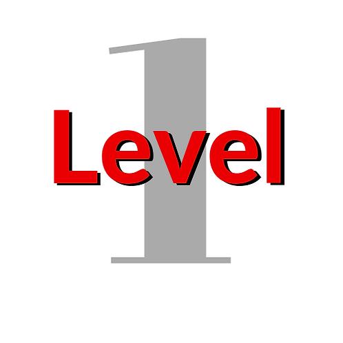AXON Affiliate Mentorship Level 1      Registration Fee