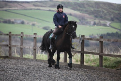 Sheffield Equestrian Centre Riding Lessons Near Sheffield