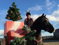 Sheffield Equestrian Centre Christmas Competition 2017 5