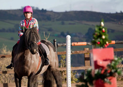 Sheffield Equestrian Centre Christmas Competition 2017