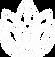 Lijnen logo_icoon_wit_scherp.png