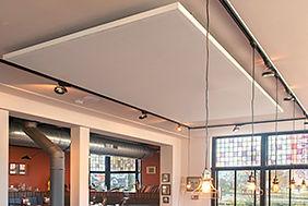 plafondpanelen.jpg