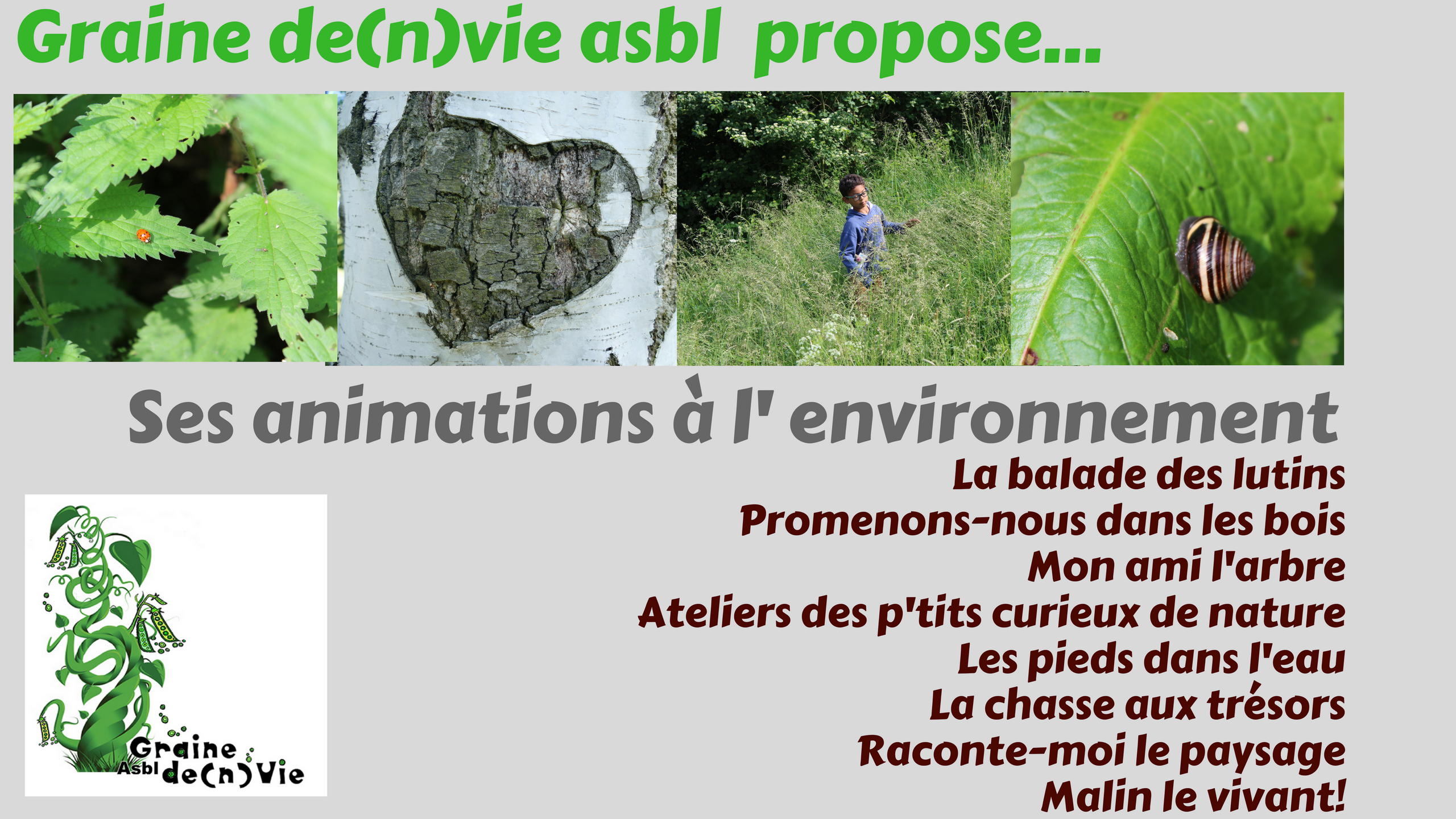 Nos animations classes vertes