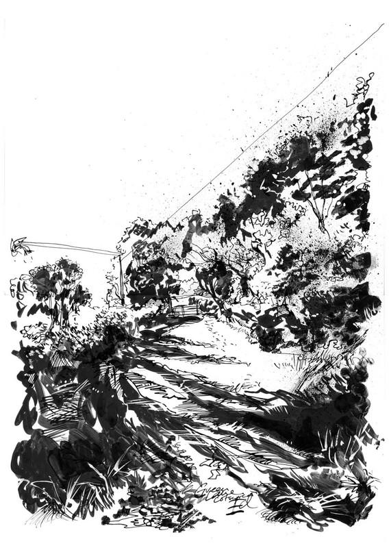 Cotswold Green Lane