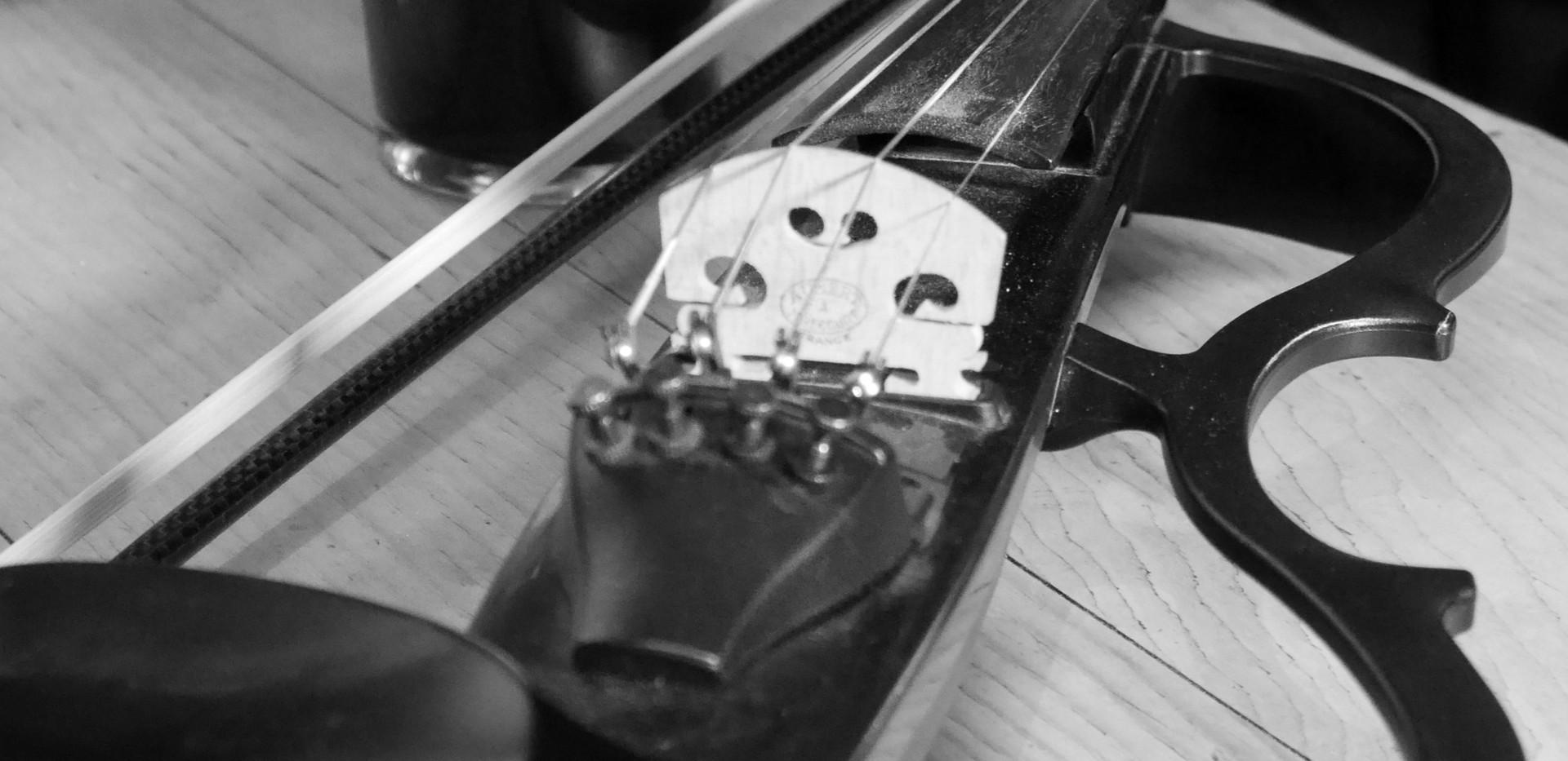Des's fiddle