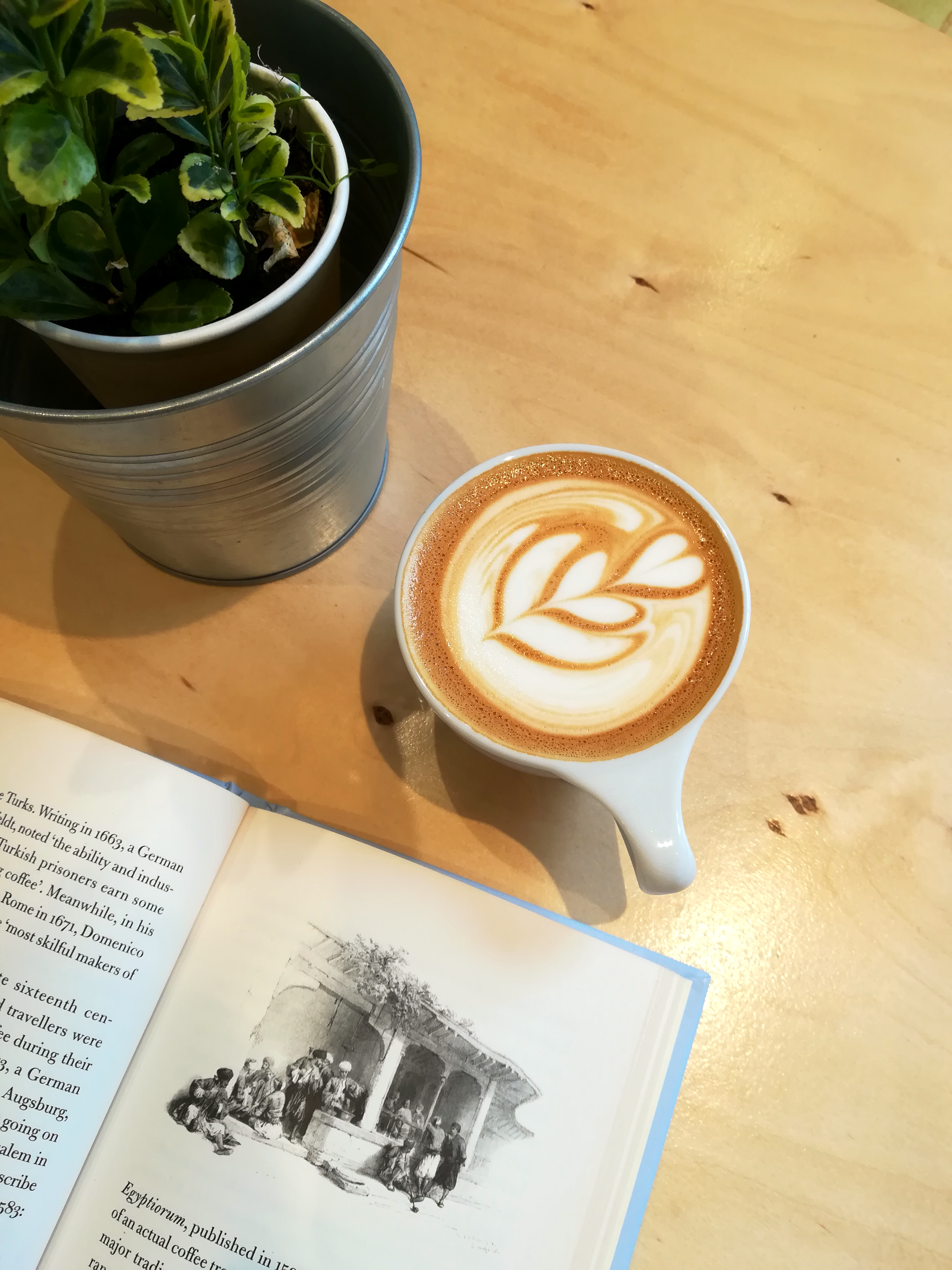 smallcoffeebookplant_edited