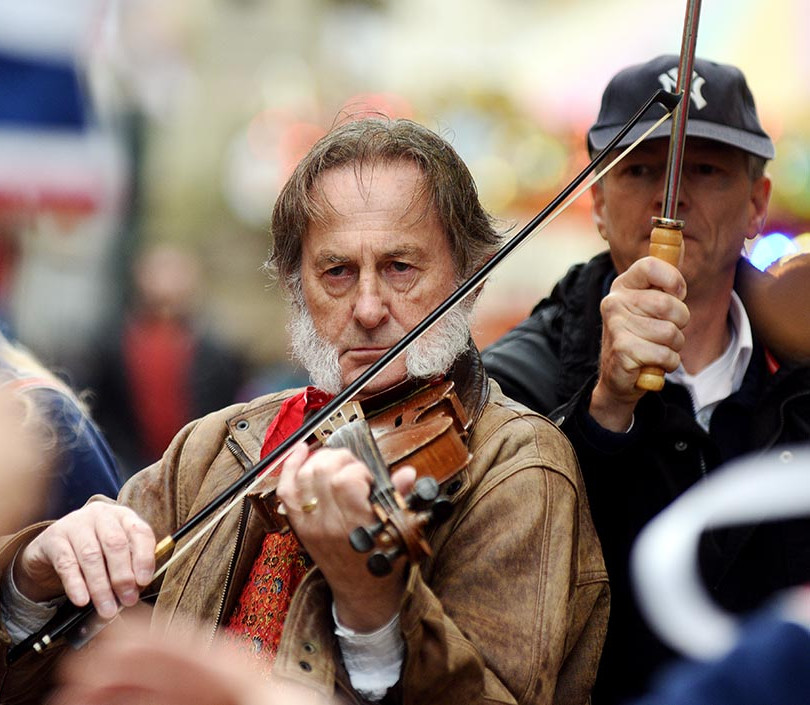 Whiskered Violinist