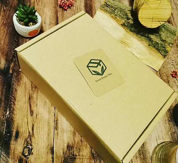 Green Future Box - courtesy image of Green Future Box