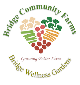Bridge Community Farms - Ellesmere Port