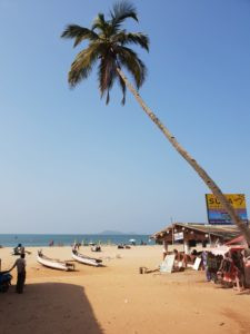 Beachlife Goa
