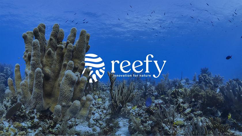Portada Reefy.jpg