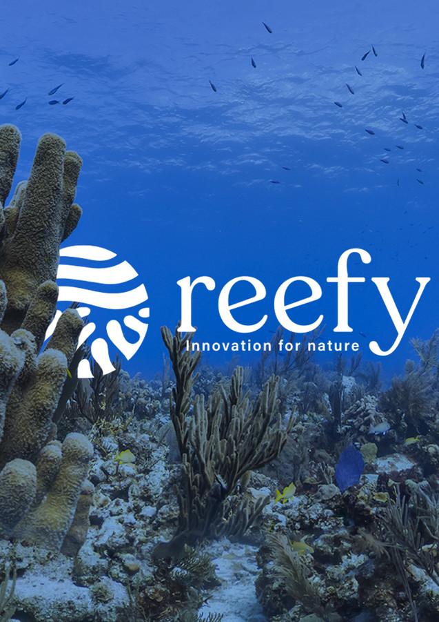 Reefy