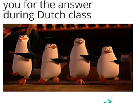 Is this YOU during Dutch class?