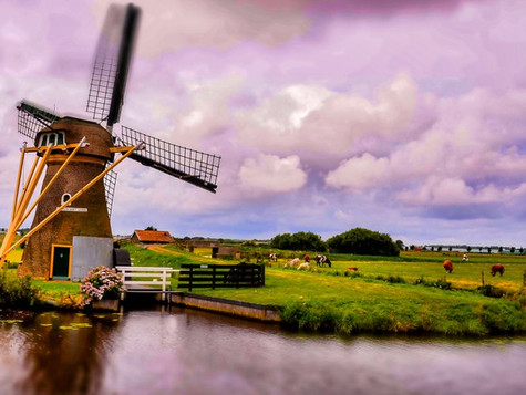 What are the benefits of learning Dutch?