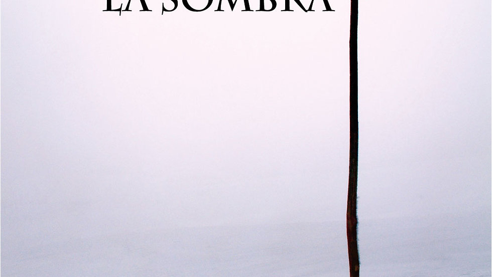 ENCUENTRO CON LA SOMBRA (Mauro Zorrilla)
