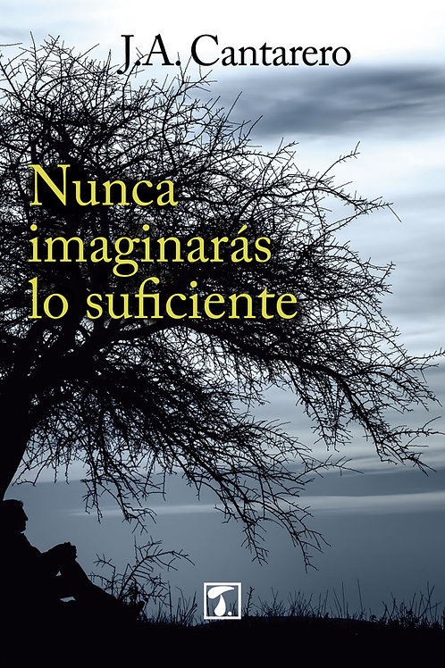 NUNCA IMAGINARÁS LO SUFICIENTE (J.A. Cantarero)