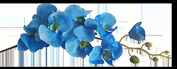 Kunst-Orchidee-Bloem-Blauw-100cm-detail.