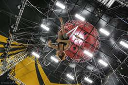 Le cirque de demain