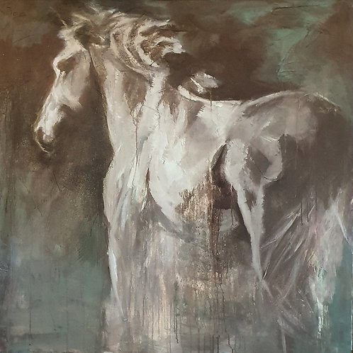 Winter with my horses I