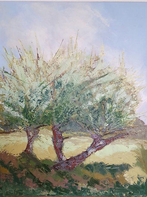 Early summer in the Orchard