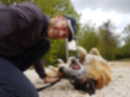 Pro Cane Hundecoaching Alain Scheidgger Geri Hundetrainer Hundesport Zugsport