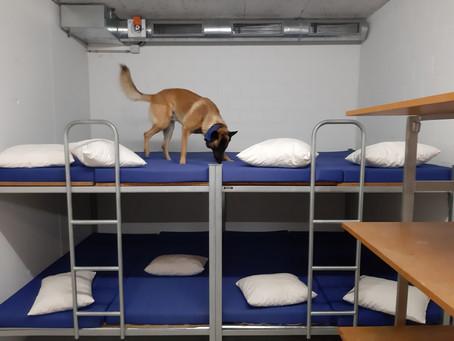 Training in der Notschlafstelle