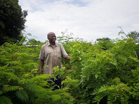 Fisenge Farmer Berringtone Musonda with