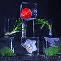 Ice Infusions