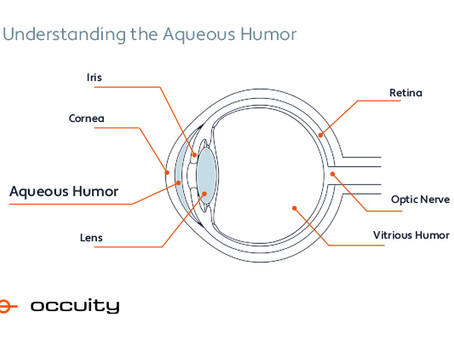 Understanding the aqueous humor