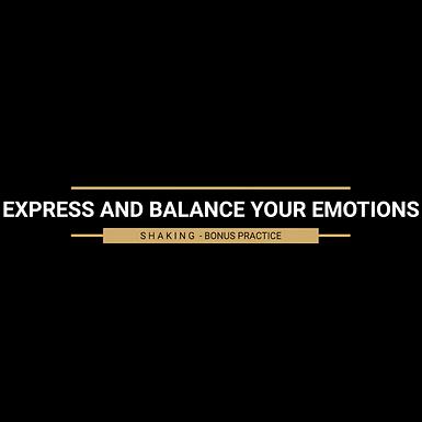 4 - Emotional Dimension 06