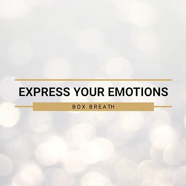 4 - Emotional Dimension 05