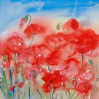 Watercolour of a group of wild poppy flowers in full bloom