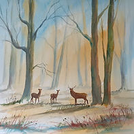 Original painting of a woodland scene with deer, in soft colours