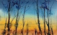 Morning sky, winter trees at first light